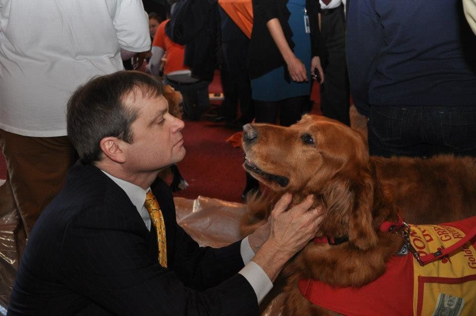 """Rep. Mike Quigley (D-Ill.) pets a golden retriever, who is available for adoption at <a href=""""http://www.grreat.org/"""">Golden"""