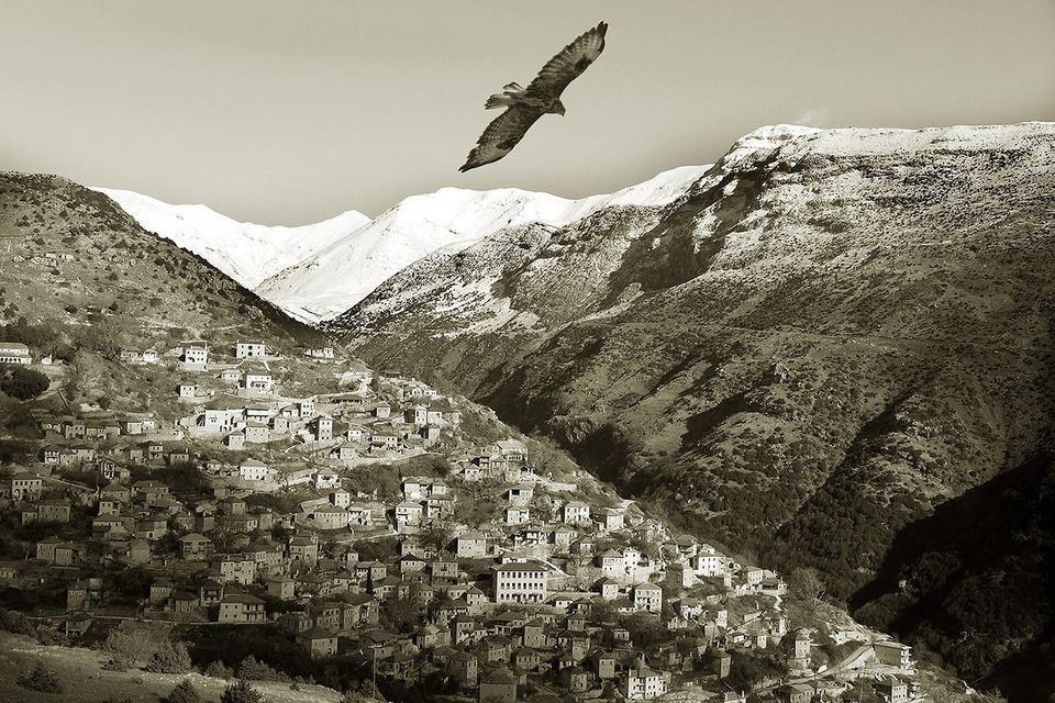 Γεράκι πάνω από το Συρράκο