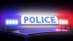 평택에서 귀가하는 여성 납치한 남성 2명이 경찰에 긴급