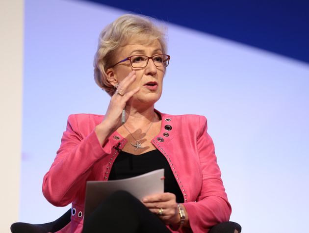 Andrea Leadsom says the UK must have the power to leave a customs arrangement with the EU in case of...