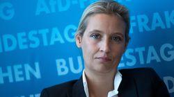 AfD-Fraktionschefin Weidel gerät intern wegen vermutlich illegaler Großspende unter