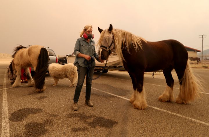 Marty Cable is one of dozens of horse owners who evacuated her home in Encinal Canyon to bring their animals to an evacuation