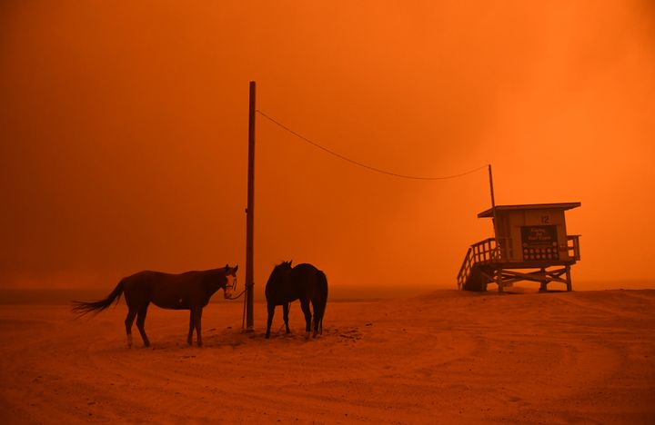 Horses are tied to a pole on a Malibu beach as heavy smoke from the Woolsey fire comes down the coastal hillsides Friday.