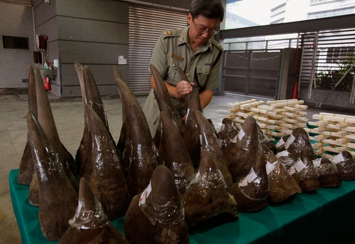 Rhino horns, ivory chopsticks and bracelets seized by the Hong Kong Customs and Excise Department in November 2011.