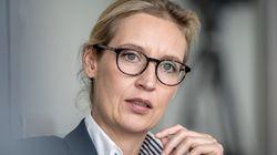 AfD-Politikerin Weidel soll dubiose Großspende für Wahlkampf verwendet