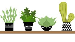 SNAZZY: 9 Indoor Plant Pots To Make Your Greenery Look Better Than