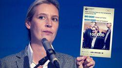 Alice Weidel im Spendensumpf – ein alter Tweet bringt sie nun in