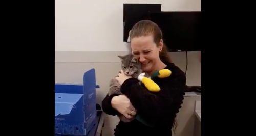 Woman emotionally reunites with her cat, who she feared was lost during a wildfire.