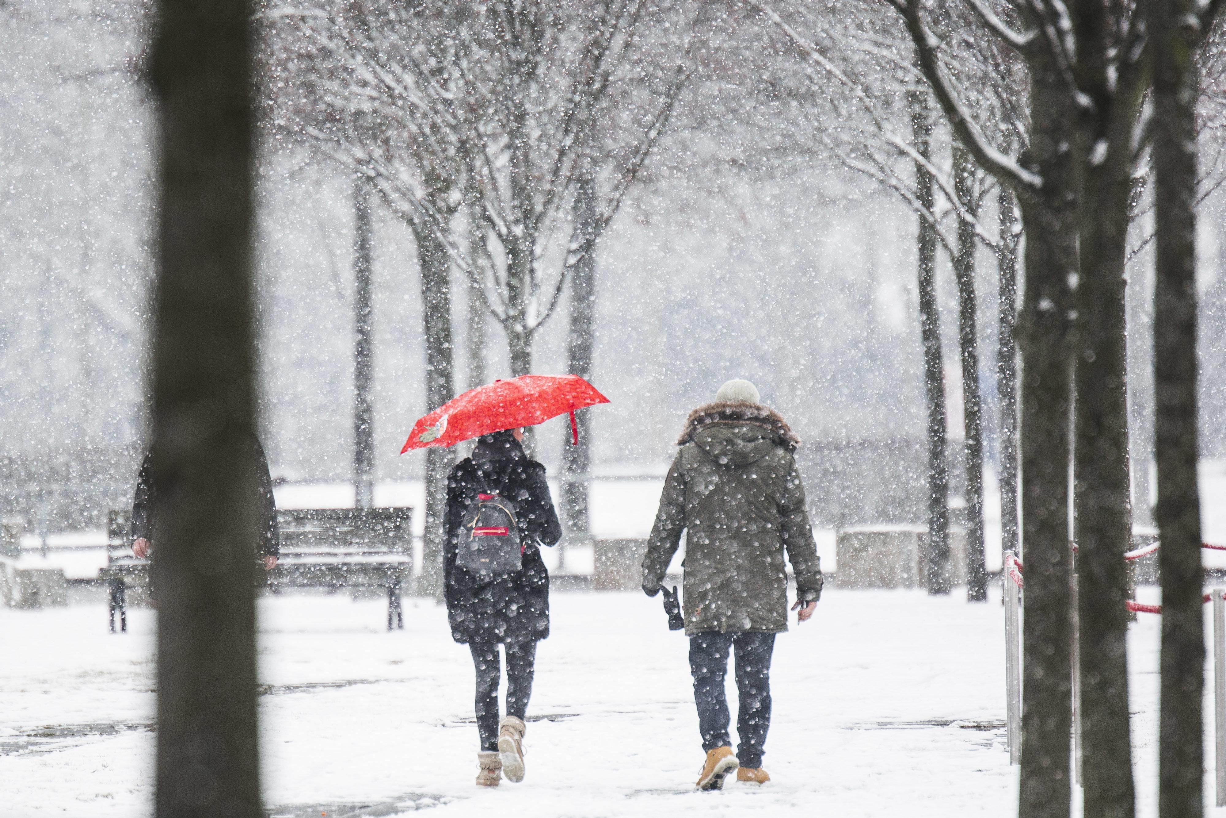 Wetter: Hier bringt der Wintereinbruch 15 Zentimeter