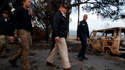 Donald Trump Thinks 'Raking' Will Stop California Wildfires Because That's What They Do In