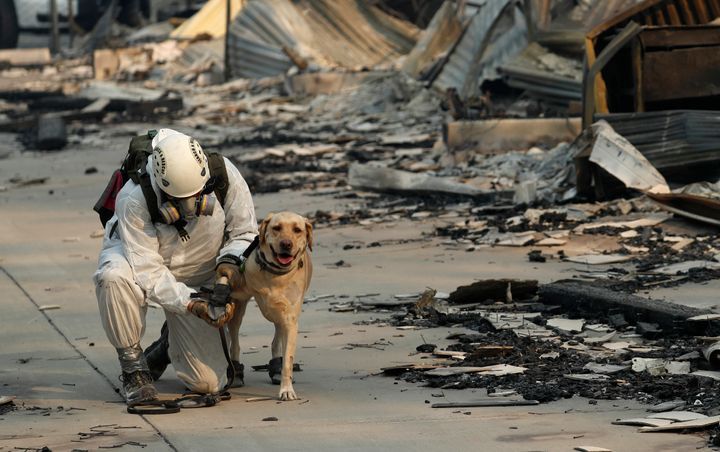Volunteers went from burned house to burned house Sunday, accompanied by a cadaver dog with a bell on its collar that jingled