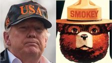 Donald Trump's Old Feud With Smokey Bear Comes Back To Burn Him