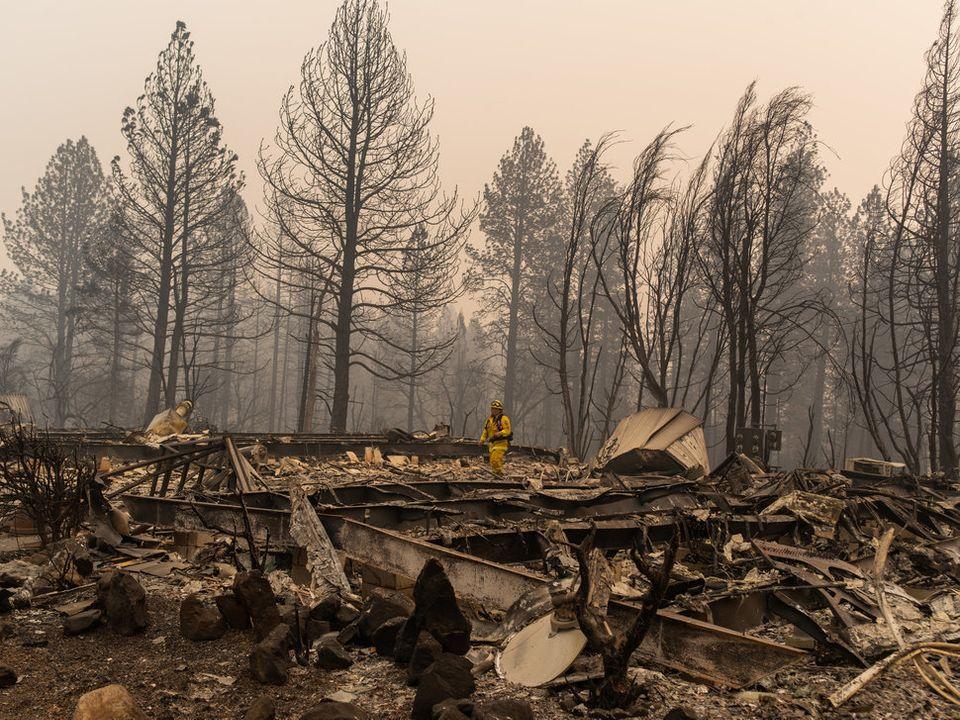 Der Feuersturm hat die Stadt Paradise vollkommen zerstört.