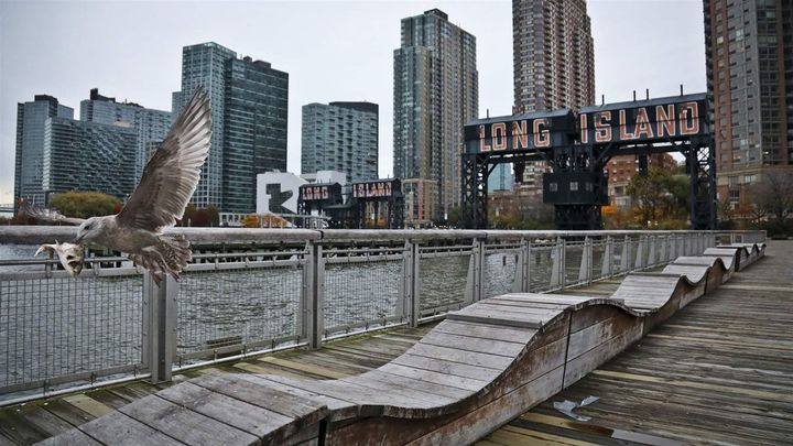 "A sea gull flies off a former dock facility in the Long Island City section of Queens, New York, an ""opportunity zone"" that w"