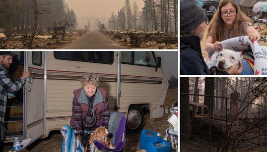 Flüchtlinge im eigenen Land: Ein Besuch bei den Feuer-Opfern in