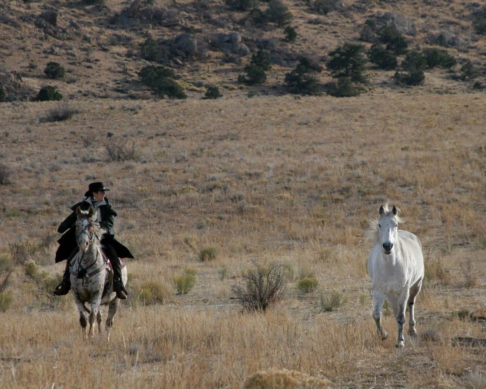 Phyllis rides Spike on the Colorado ranch in 2005.