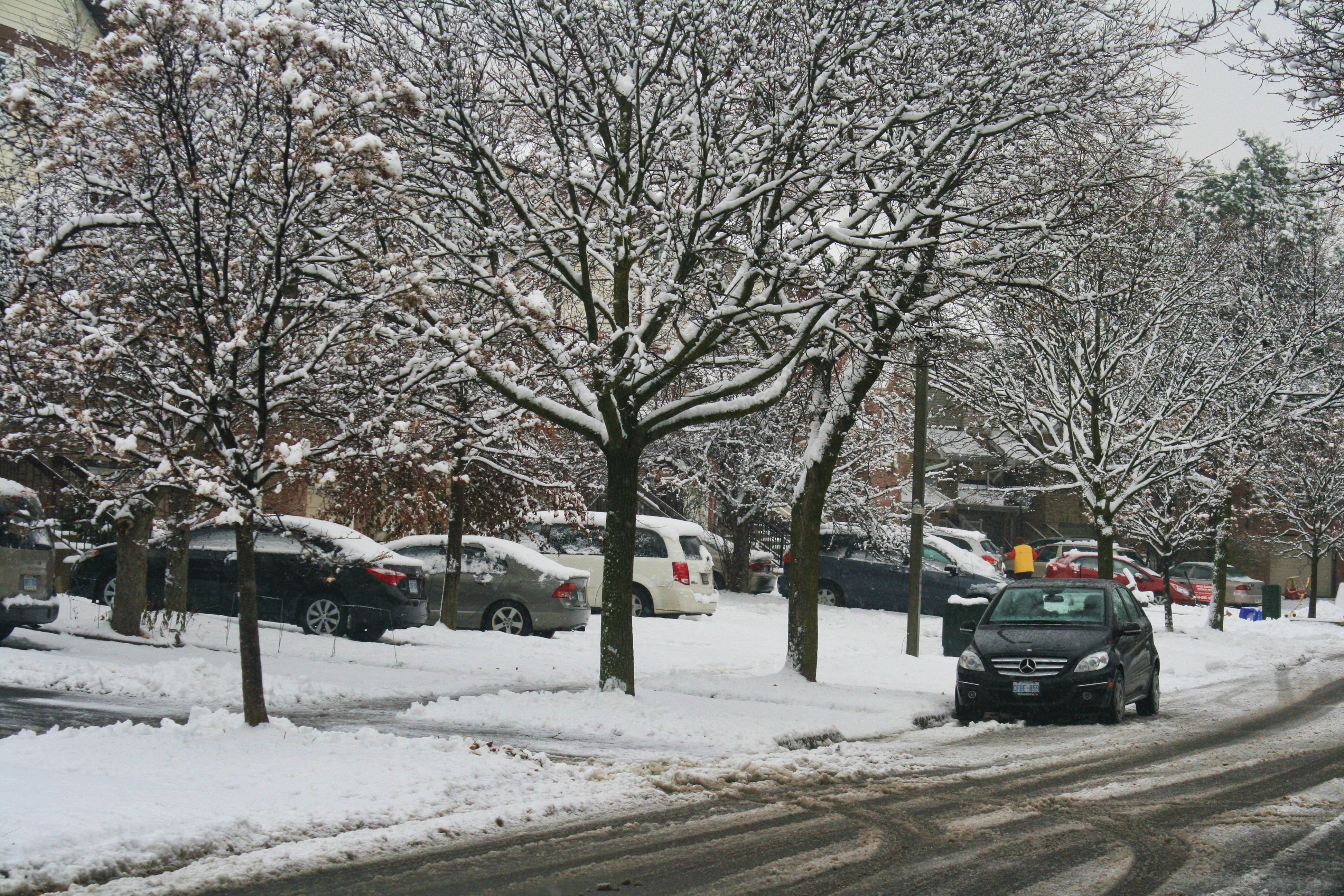Winter-Wetter: In diesen Regionen kommt es zu viel Schnee, Frost und