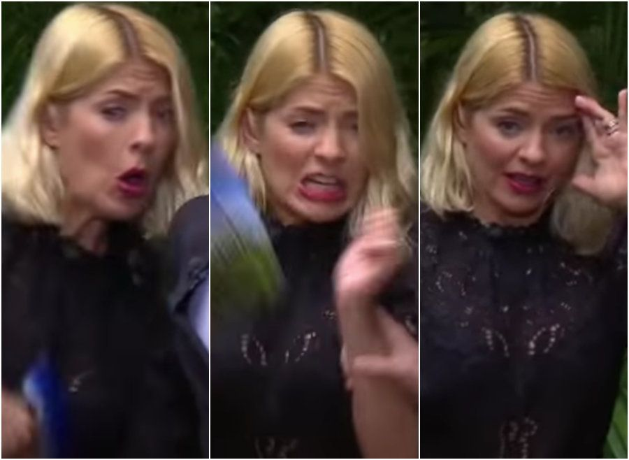 Holly Willoughby's Reactions To The First 'I'm A Celebrity' Trial Were Absolutely