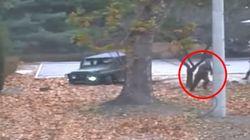 Nordkorea: Deserteur berichtet, wie die Menschen wirklich über Kim Jong-un
