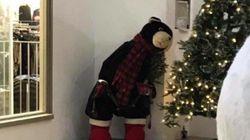 Πολικές αρκούδες κάνουν σεξ σε εμπορικό κέντρο για τα Χριστούγεννα και κάποιοι