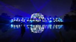Mince Pies, Mulled Wine And All Of The Lights: Why Christmas At Kew Gardens Is An Instagram