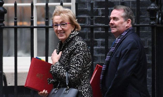 Andrea Leadsom and Liam Fox arrive for