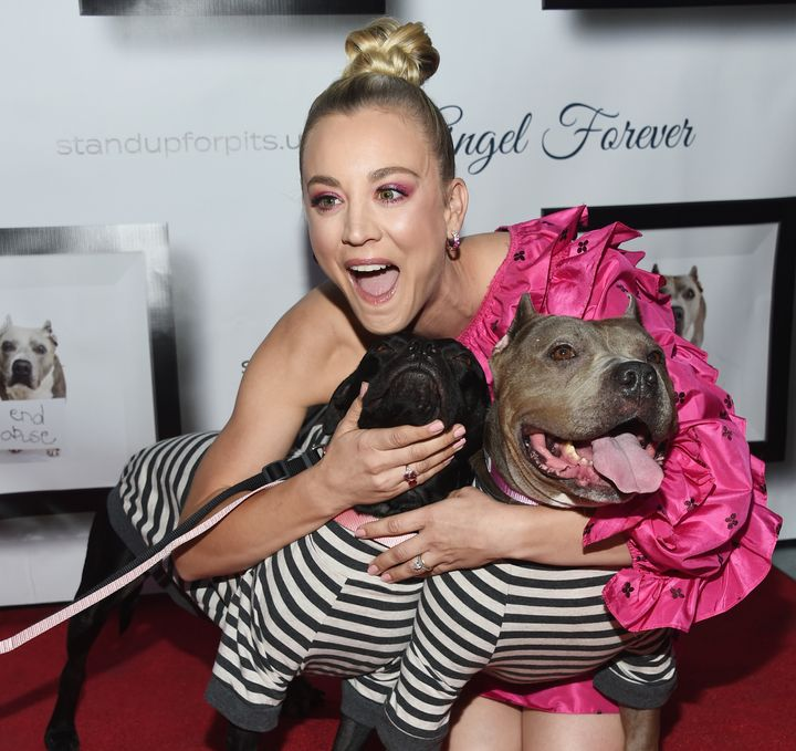 Kaley Cuoco, pictured at the 8th Annual Stand Up for Pits event at the Hollywood Improv Comedy Club, is known for suppor
