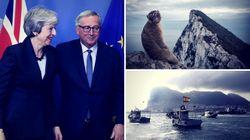 Warum der Brexit-Deal an einem Affenfelsen scheitern