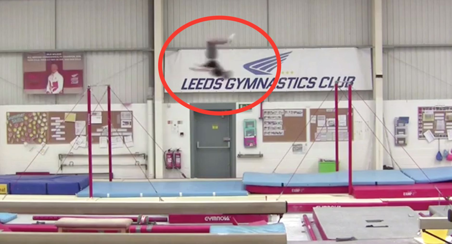This Gymnast's World Record Backflip Has To Be Seen To Be