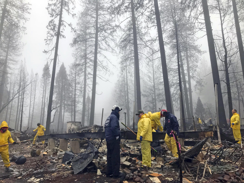 Tras una breve demora por un aguacero, varios voluntarios continúan buscando restos humanos entre los restos de un parque para casas rodantes en Paradise, California, el viernes 23 de noviembre de 2018. (AP Foto/Kathleen Ronayne)