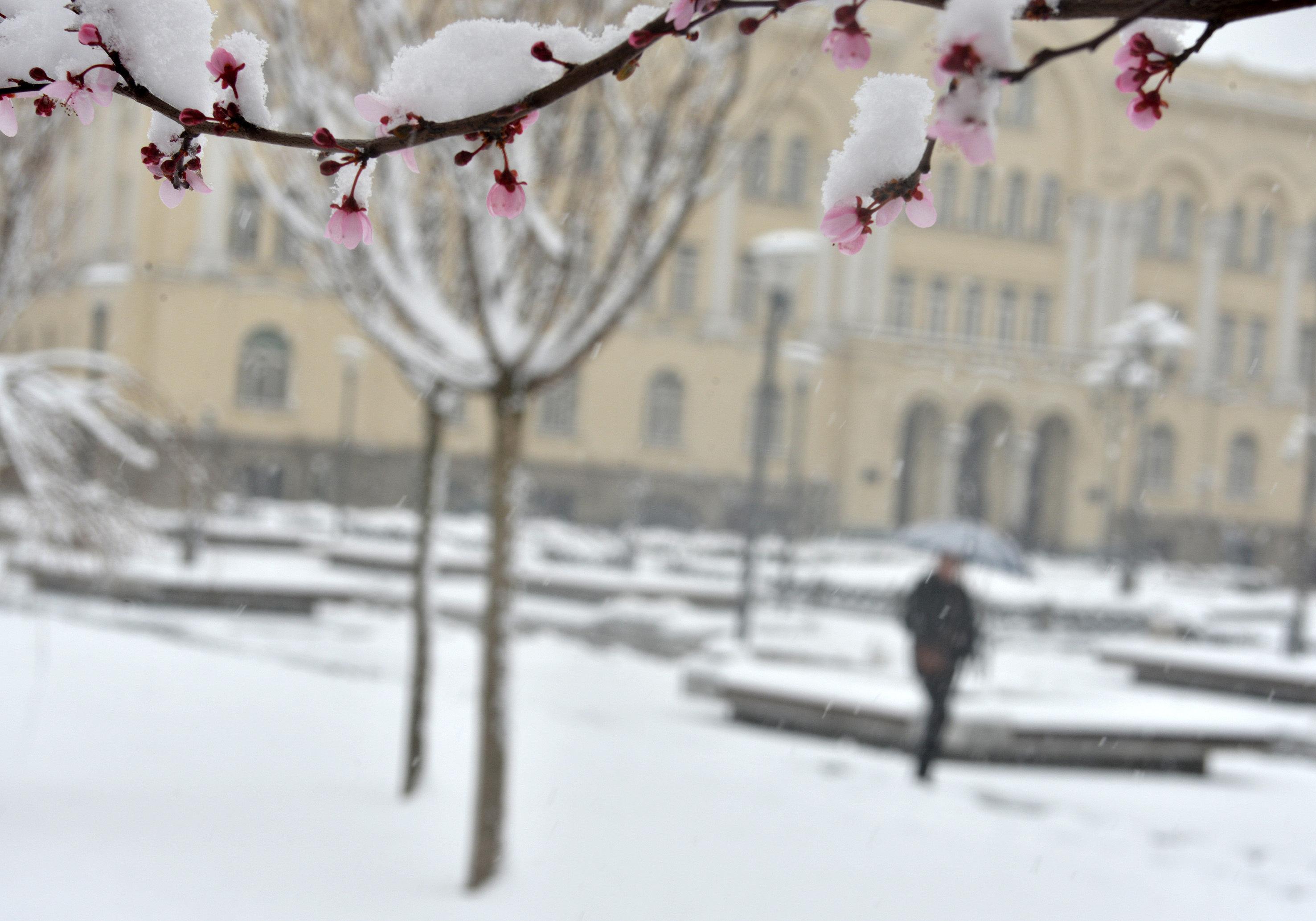 Winter-Wetter: In der kommenden Woche erwarten uns eisige Winde, Schnee und