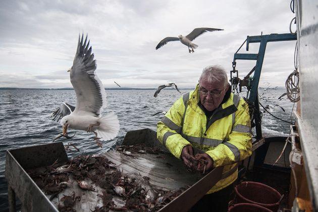 Ein Fischer vor der Küste Großbritanniens.