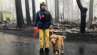 Eric Darling y su perro Wyatt son parte del equipo de búsqueda del condado Orange en el sur de California, uno de varios equipos que hacen una segunda búsqueda de un parque para casas rodantes después del mortal incendio en Paradise, California, el viernes 23 de noviembre de 2018. (AP Foto/Kathleen Ronayne)