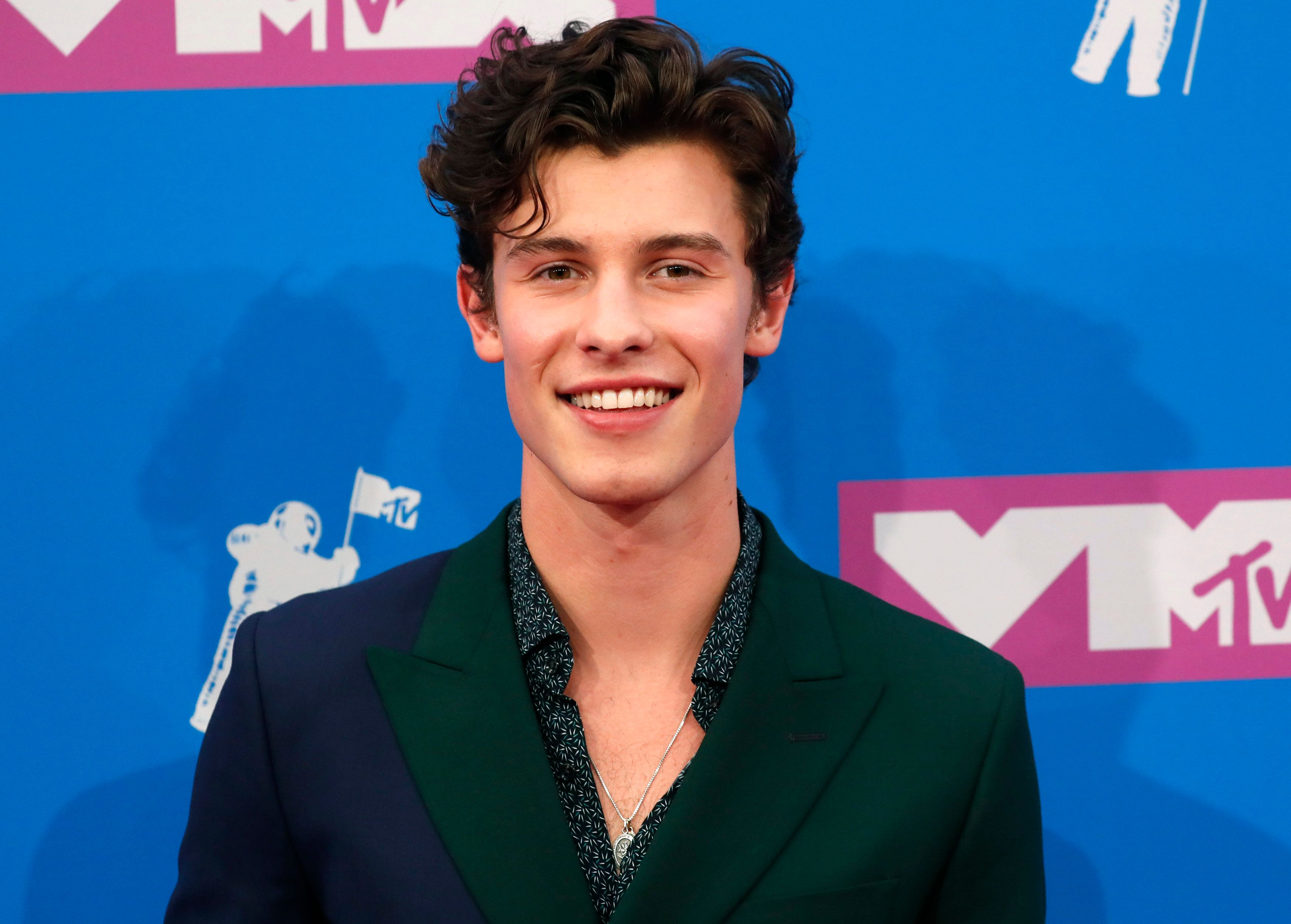 Shawn Mendes Addresses Gay Rumors