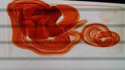 Des pythons retrouvés à Algésiras dans la valise d'un voyageur venu de