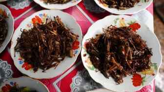 This picture taken on March 15, 2011 shows plates of fried insects ready to eat, including crickets and grasshoppers, for sale at a local market in Vientiane.      AFP PHOTO / HOANG DINH Nam        (Photo credit should read HOANG DINH NAM/AFP/Getty Images)