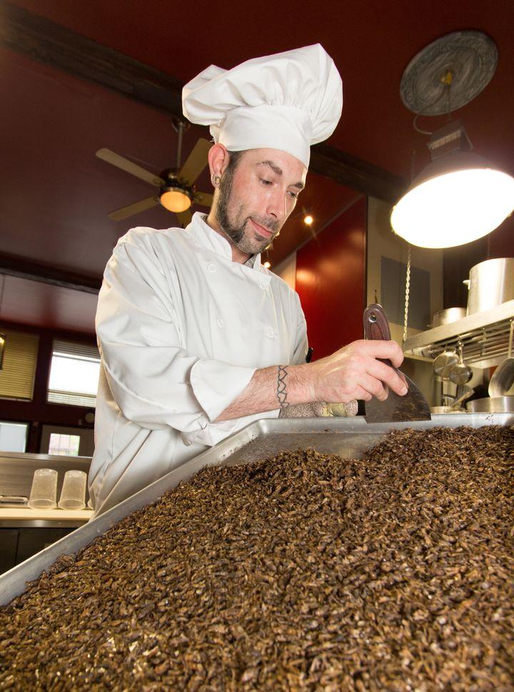 A chef at Entomo Farms prepares a batch of crickets for his next recipe.