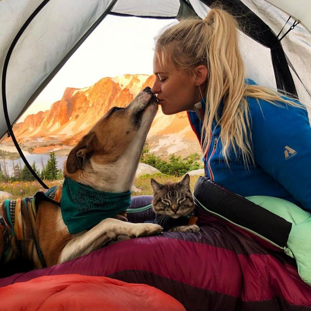 This Rescue Dog And Cat Duo Are The Most Adorable Adventure