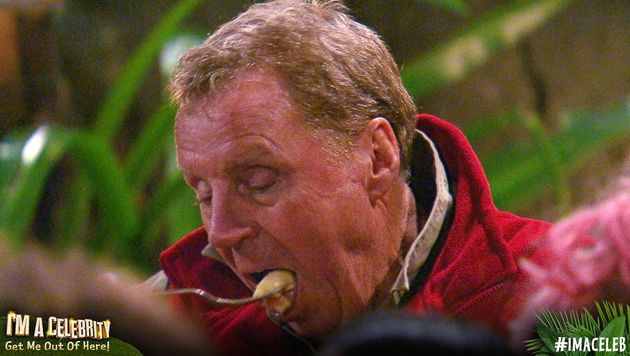 'I'm A Celebrity': 16 Reasons Why We All Fell For King Of The Jungle Harry