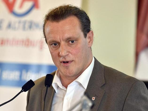 Steffen Köninger, AfD-Bundesvorstandsmitglied und Landtagsabgeordneter in Brandenburg.