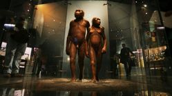 Στη Β.Αφρική το λίκνο της ανθρωπότητας - Τι αποδεικνύουν για την καταγωγή μας νέα ευρήματα 2,4εκατ.