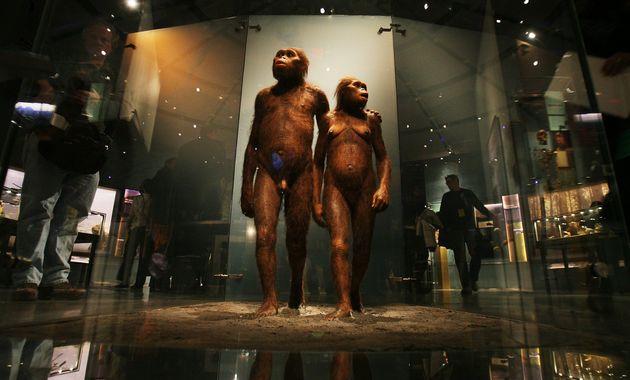 Στη Βόρεια Αφρική το λίκνο της ανθρωπότητας - Νέα ευρήματα ηλικίας 2,4 εκατ.