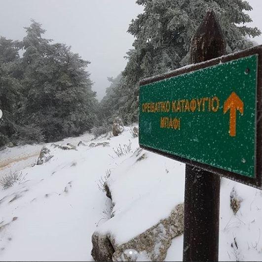 Η Πάρνηθα στα λευκά. Πρώτες φωτογραφίες στα social media από το χιονισμένο