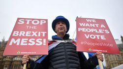 '미스터 스톱 브렉시트' : 내가 매일 브렉시트 반대 시위를 하는