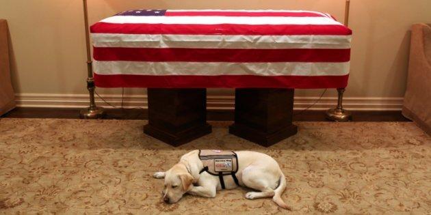 Le chien de George Bush est resté fidèle au