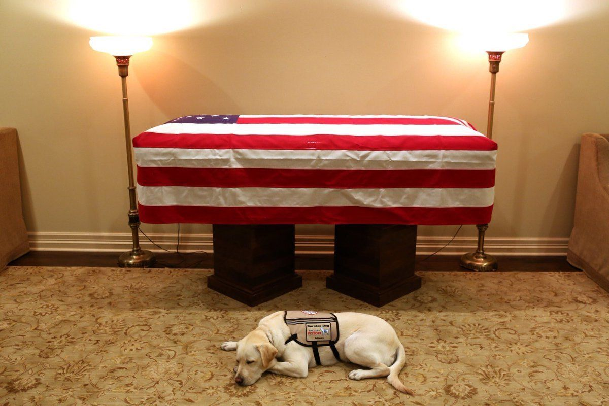 """Mission complete,"" Bush's spokesman, Jim McGrath, captioned the image on"