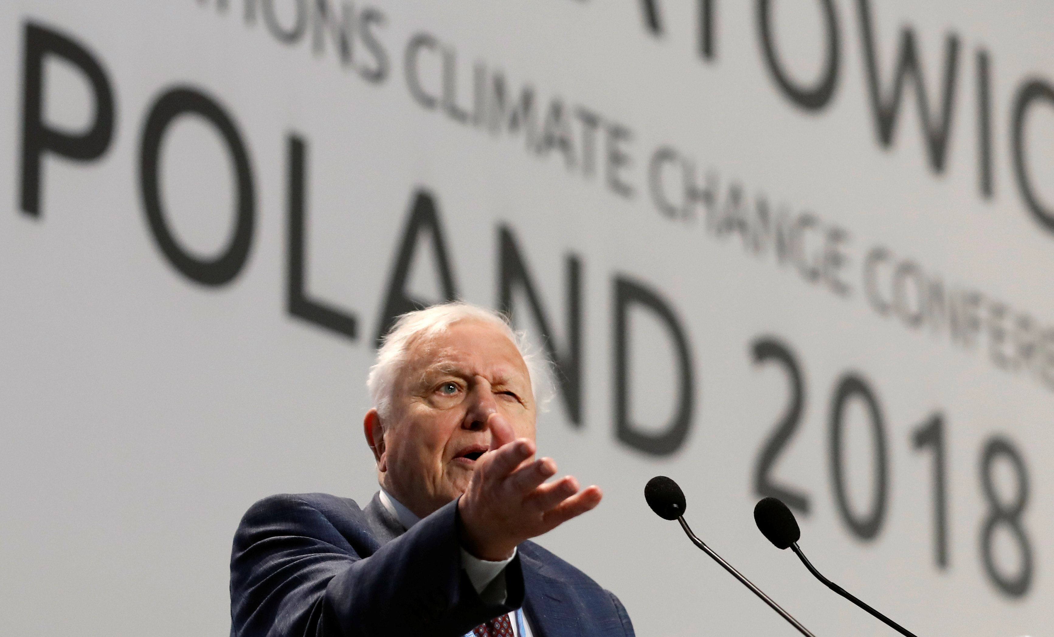 """World renowned naturalist Sir David Attenborough delivers the """"People's Seat"""" address during the opening of COP24 UN Climate Change Conference 2018 in Katowice, Poland December 3, 2018. REUTERS/Kacper Pempel"""
