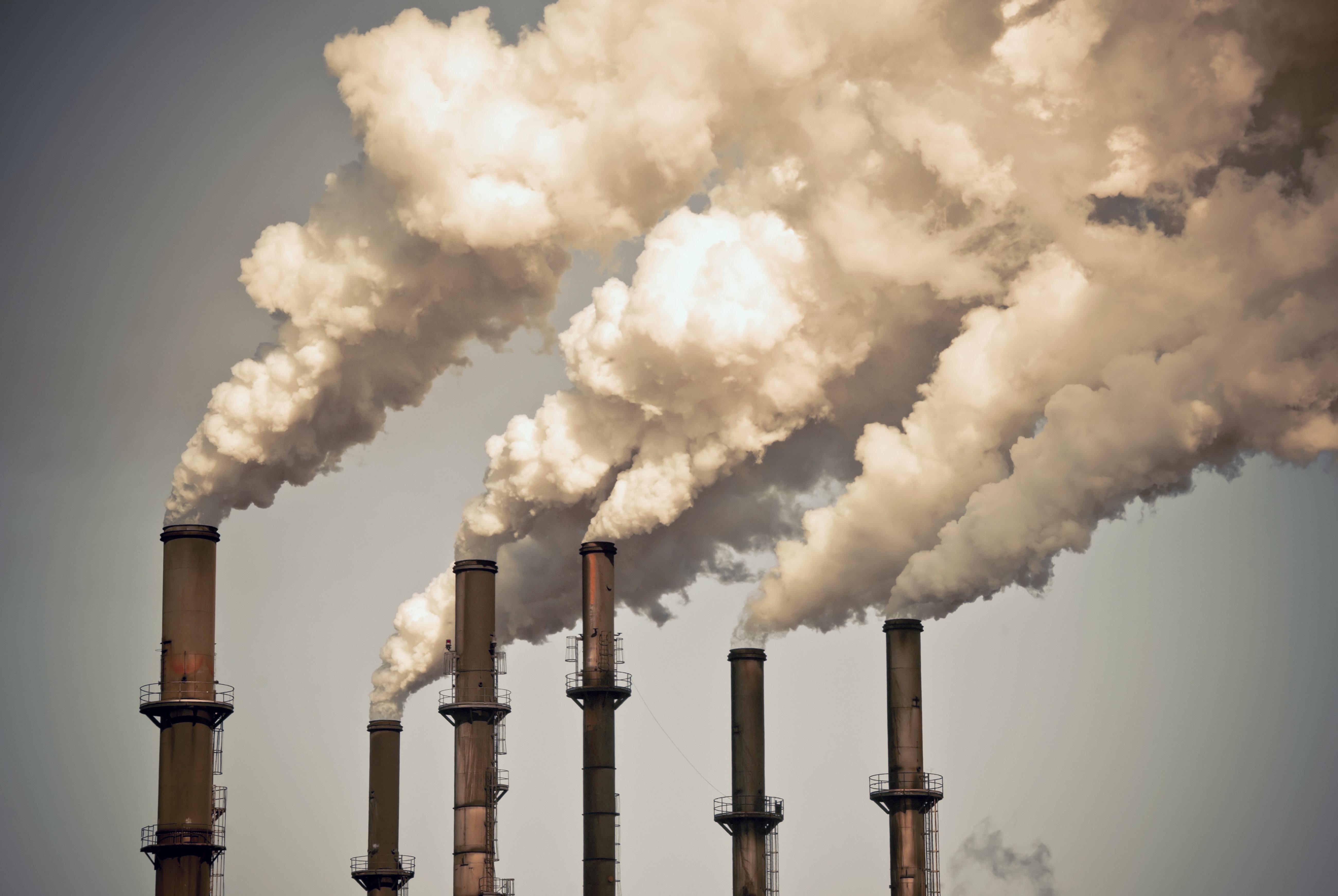 COP 24: La Tunisie entame l'élaboration de sa stratégie de développement à bas