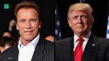 Arnold Schwarzenegger Wants To Terminate Climate Change