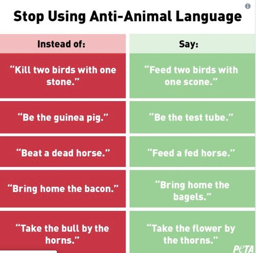 PETA Gets Dogged For Tweet Demanding End To 'Anti-Animal